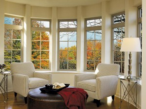 Living Room Windows (1)